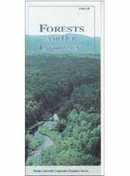 Forests and Our Environment