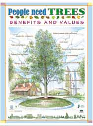 People Need Trees: Benefits & Values (English)