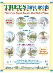 Trees Have Needs: Plant the Right Tree in the Right Place (English)
