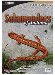 Salamanders of Indiana book