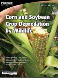 Corn and Soybean Crop Depredation by Wildlife