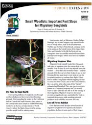 Small Woodlots:Important Rest Stops for Migratory Songbirds