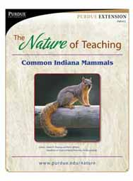 The Nature of Teaching: Common Indiana Mammals