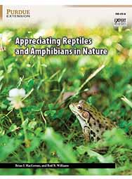 Appreciating Reptiles and Amphibians in Nature