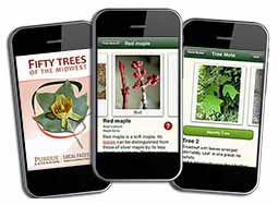 Fifty Trees of the Midwest App for iPhone
