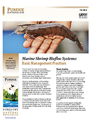 Marine Shrimp Biofloc Systems: Basic Management Practices