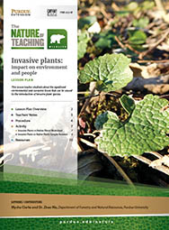 Invasive plants: impact on environment and people