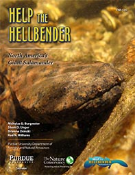 Help the Hellbender, North America's Giant Salamander