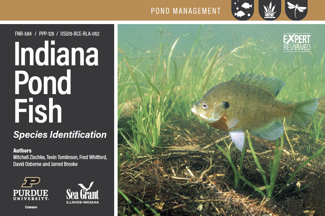 Indiana Pond Fish, Species Identification Card Set