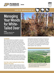 Managing Your Woods for White-Tailed Deer