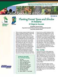 Planting Forest Trees and Shrubs in Indiana