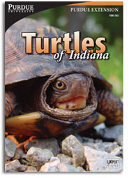 Turtles of Indiana