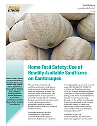 Home Food Safety: Use of Readily Available Sanitizers on Cantaloupes