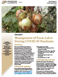 Management of Farm Labor During COVID-19 Pandemic