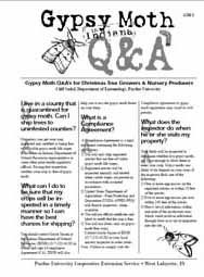 Gypsy Moth Q&A's for Christmas Tree Growers & Nursery Producers