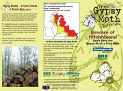 Beware of Hitch Hikers! Don't Give the Gypsy Moth a Free Ride