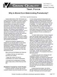 Why Is Stored Corn Deteriorating Prematurely?