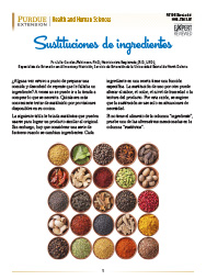 Ingredient Substitutions (Spanish)