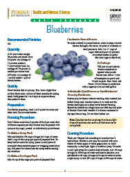 Let's Preserve: Blueberries
