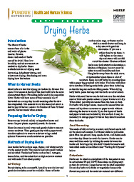 Let's Preserve: Drying Herbs
