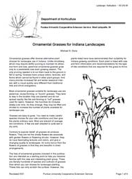 Ornamental Grasses for Indiana Landscapes