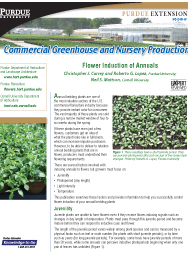 Commercial Greenhouse and Nursery Production: Flower Induction of Annuals