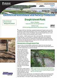 Commercial Greenhouse and Nursery Production: Drought-tolerant Plants