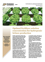 Optimal fertilizer solution concentration for Hydroponic lettuce production