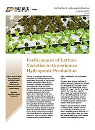 Performance of lettuce varieties in greenhouse hydroponic production