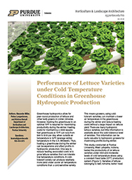 Performance of Lettuce Varieties under Cold Temperature Conditions in Greenhouse Hydroponic Production