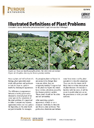 Illustrated Definitions of Plant Problems