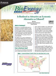 Is Biodiesel as Attractive an Economic Alternative as Ethanol?