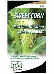Sweet Corn Pest Identification and Management