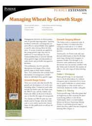 Managing Wheat by Growth Stage