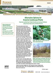 Commercial Greenhouse and Nursery Production: Alternative Options for Invasive Landscape Plants