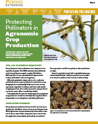 Protecting Pollinators: Protecting Pollinators in Agronomic Crop Production