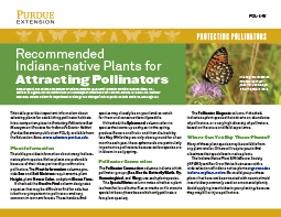Protecting Pollinators: Recommended Indiana-native Plants for Attracting Pollinators