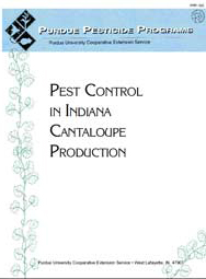 Pest Control in Indiana Cantaloupe Production