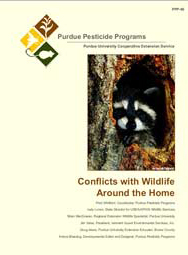 Conflicts with Wildlife Around the Home