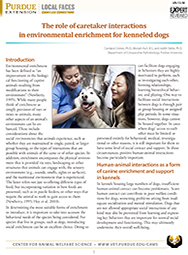 Role of Caretaker Interactions in Environmental Enrichment for Kenneled Dogs