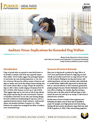Auditory Stress: Implications for Kenneled Dog Welfare