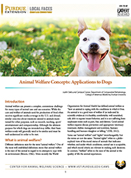 Animal Welfare Concepts: Applications to Dogs