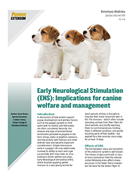 Early Neurological Stimulation (ENS): Implications for canine welfare and management