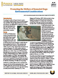 Promoting the Welfare of Kenneled Dogs: Environmental Considerations
