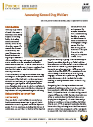 Assessing Kennel Dog Welfare