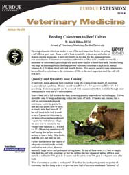 Feeding Colostrum to Beef Calves