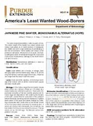 America's Least Wanted Wood-Borers: Japanese Pine Sawyer, Monochamus alternatus (Hope)