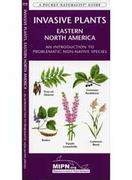 Invasive Plants of the Eastern U.S.: An Introduction to the Problematic Non-Native Species