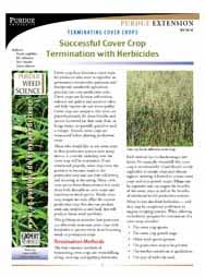 Terminating Cover Crops: Successful Cover Crop Termination with Herbicides